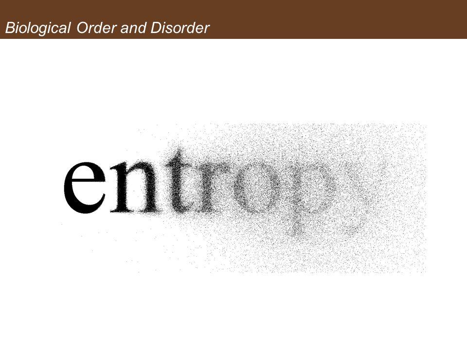 Biological Order and Disorder