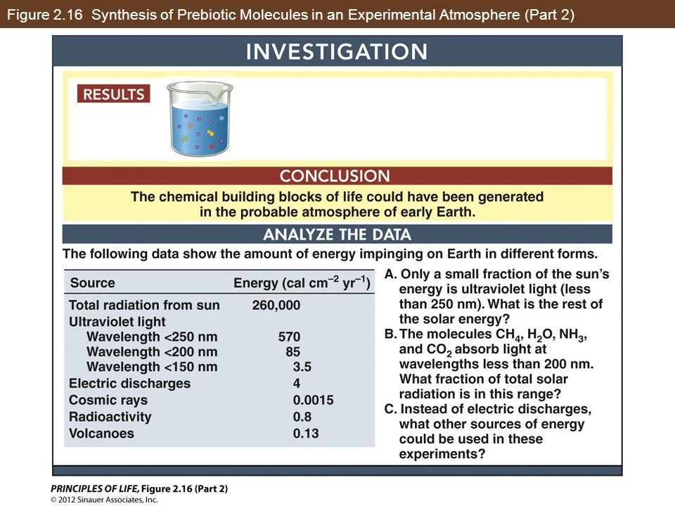 Figure 2.16 Synthesis of Prebiotic Molecules in an Experimental Atmosphere (Part 2)