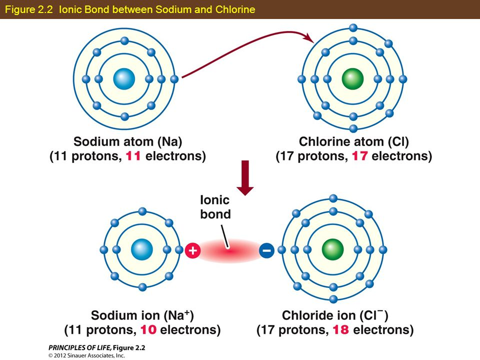 Figure 2.2 Ionic Bond between Sodium and Chlorine