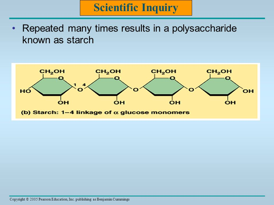 Scientific Inquiry Repeated many times results in a polysaccharide known as starch