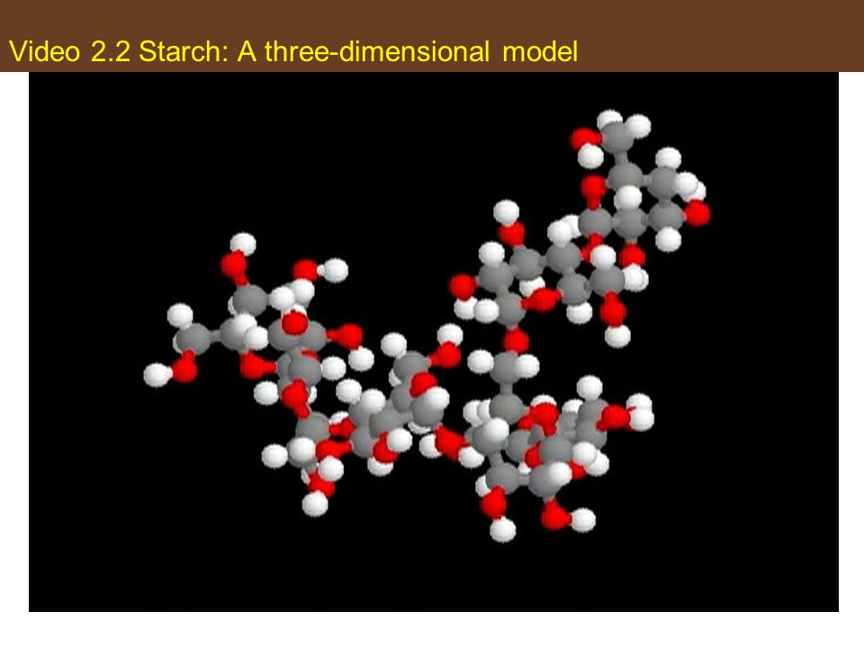 Video 2.2 Starch: A three-dimensional model