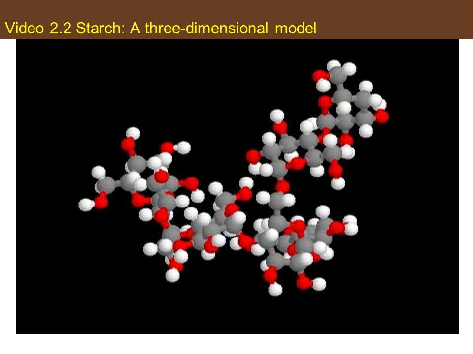 Video 2.2 Starch: A three-dimensional model