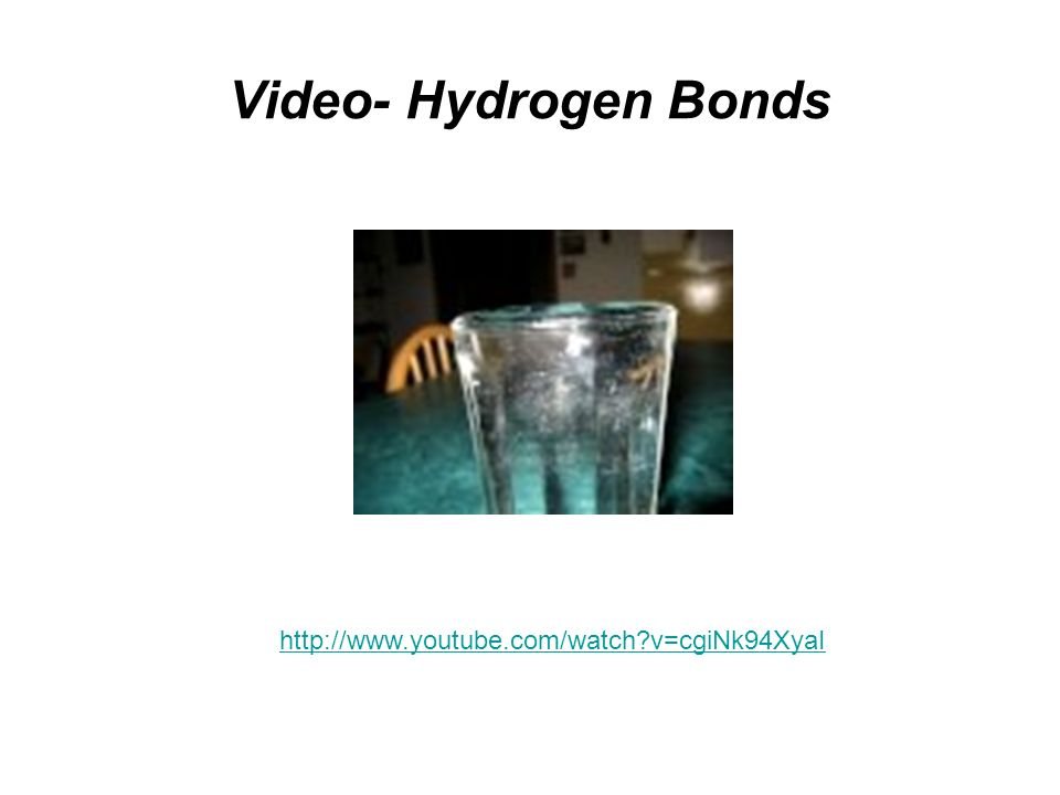 Video- Hydrogen Bonds http://www.youtube.com/watch v=cgiNk94XyaI