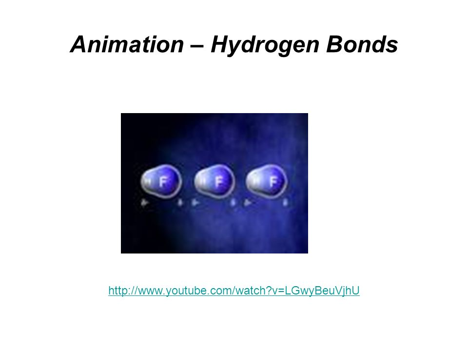 Animation – Hydrogen Bonds