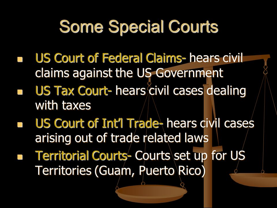 Some Special Courts US Court of Federal Claims- hears civil claims against the US Government. US Tax Court- hears civil cases dealing with taxes.