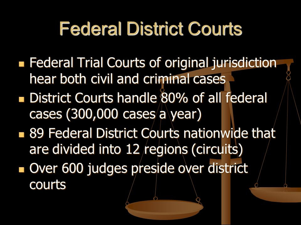 Federal District Courts