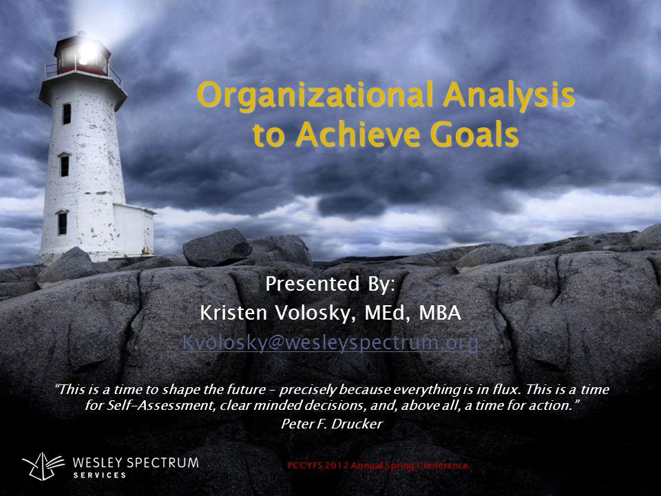Organizational Analysis to Achieve Goals