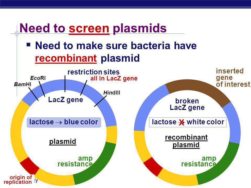 Need to screen plasmids