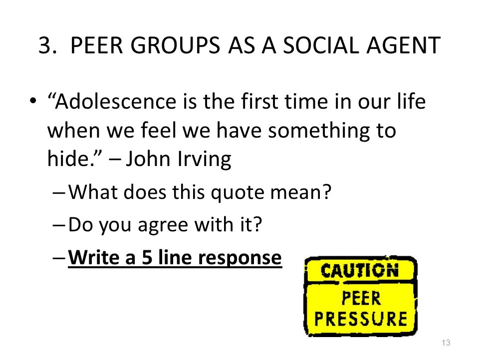 3. PEER GROUPS AS A SOCIAL AGENT