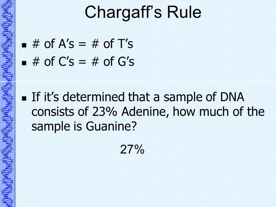 Chargaff's Rule # of A's = # of T's # of C's = # of G's