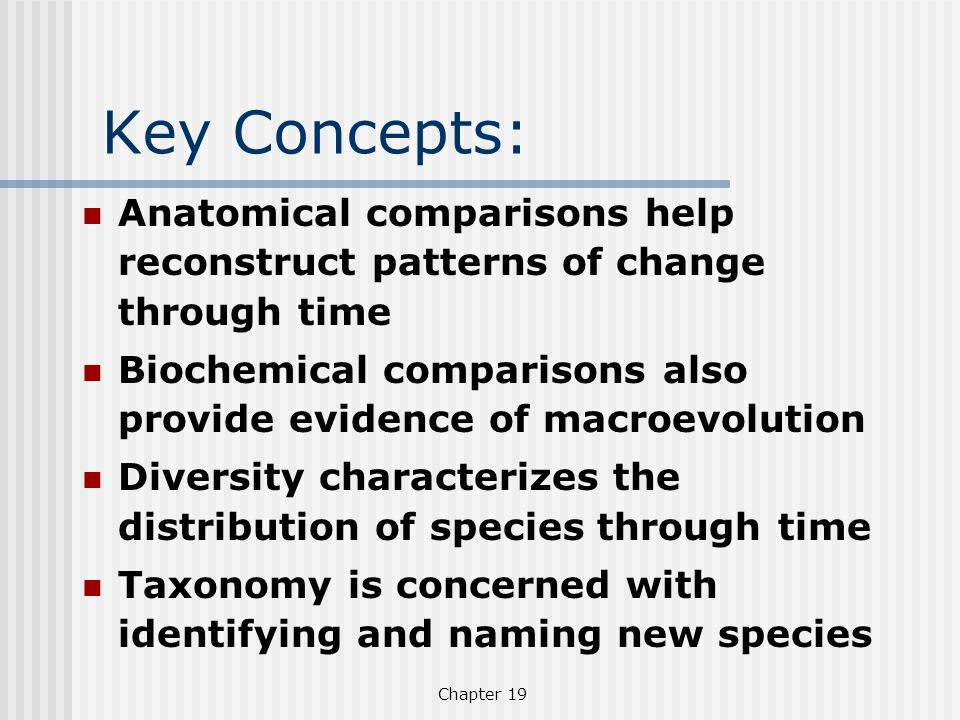 Key Concepts: Anatomical comparisons help reconstruct patterns of change through time.