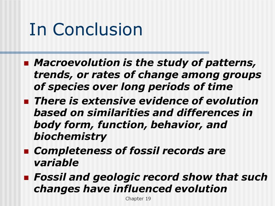 In Conclusion Macroevolution is the study of patterns, trends, or rates of change among groups of species over long periods of time.