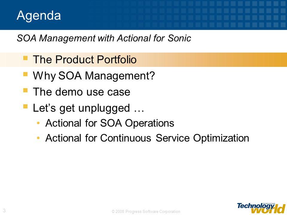 Agenda The Product Portfolio Why SOA Management The demo use case