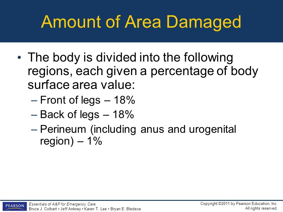 Amount of Area Damaged The body is divided into the following regions, each given a percentage of body surface area value: