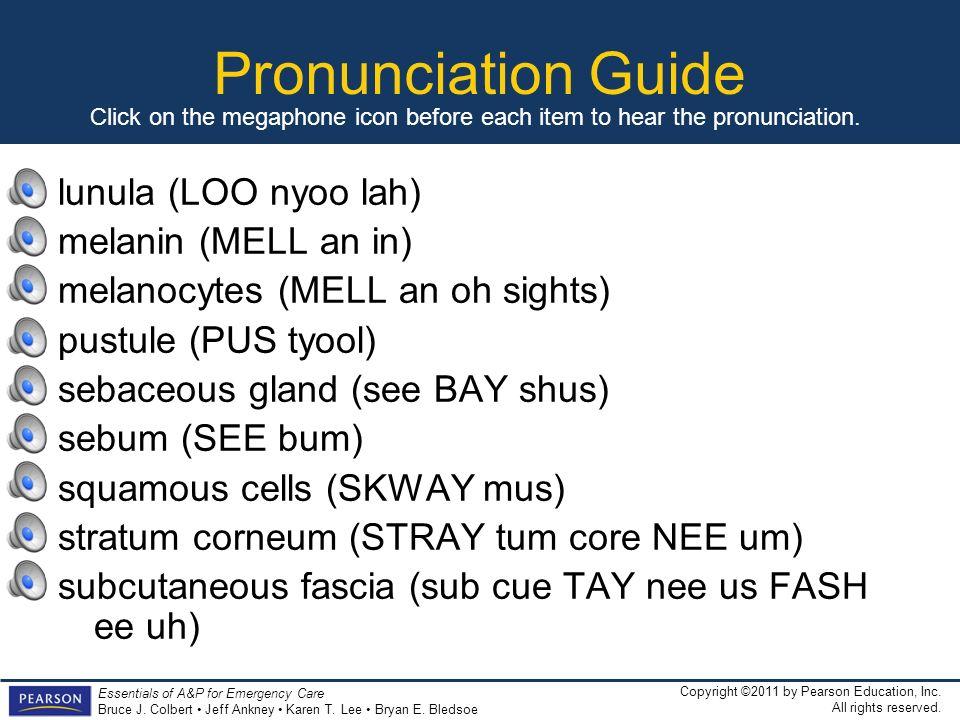 Pronunciation Guide lunula (LOO nyoo lah) melanin (MELL an in)