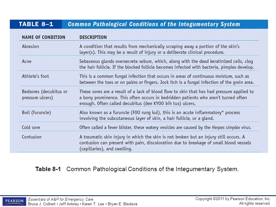 Table 8-1 Common Pathological Conditions of the Integumentary System.