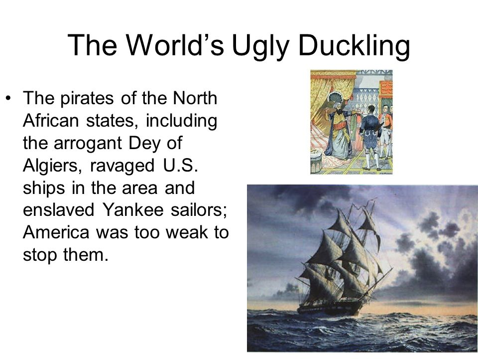 The World's Ugly Duckling