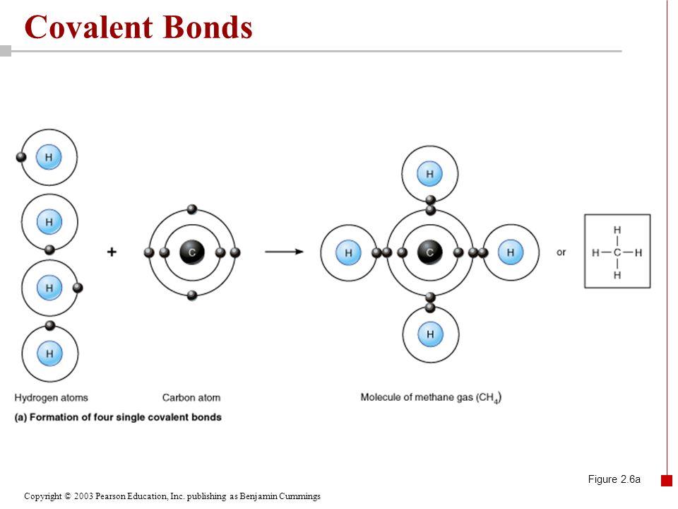 Covalent Bonds Figure 2.6a