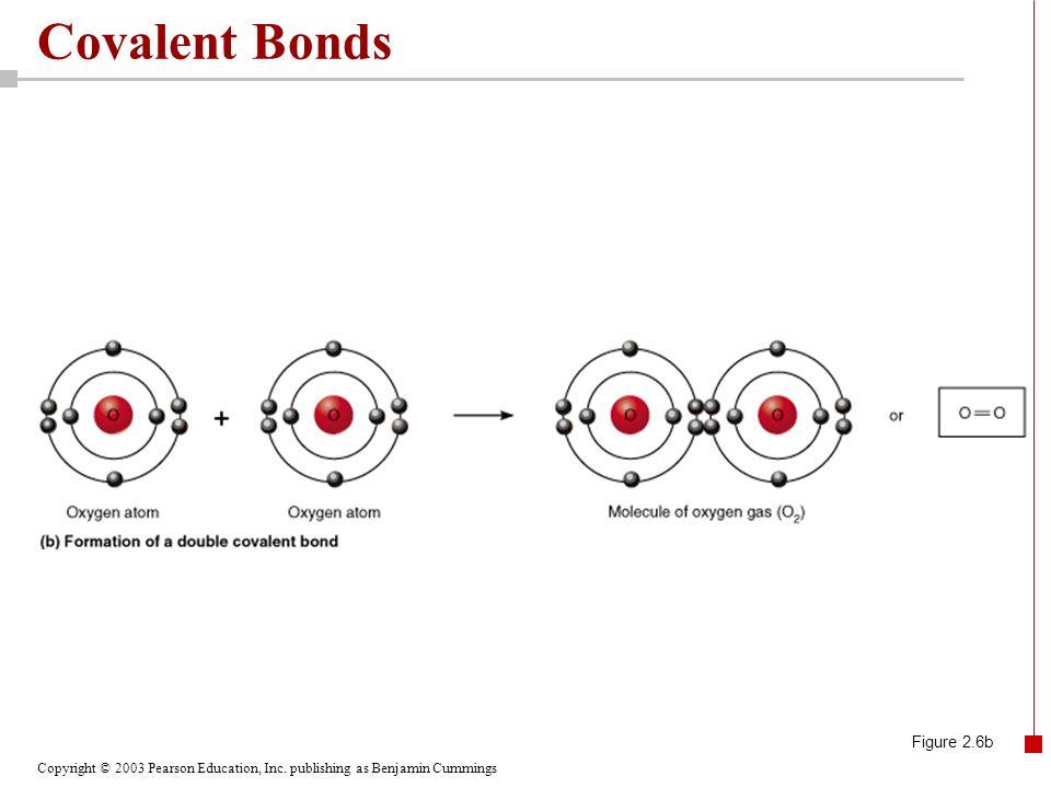 Covalent Bonds Figure 2.6b