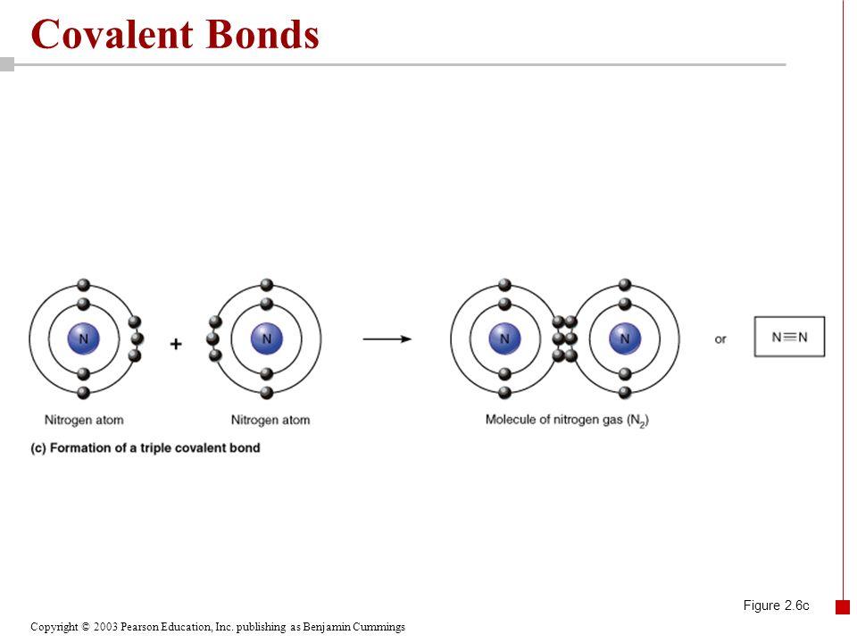 Covalent Bonds Figure 2.6c