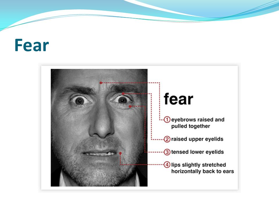 fear induced emotion on motivation Fear appeal is a term the protection motivation theory predicts that preventative actions will be fear strength is related to the emotion of fear.