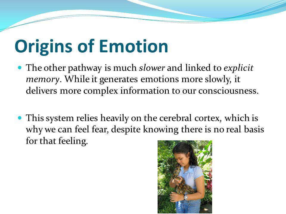 Origins of Emotion