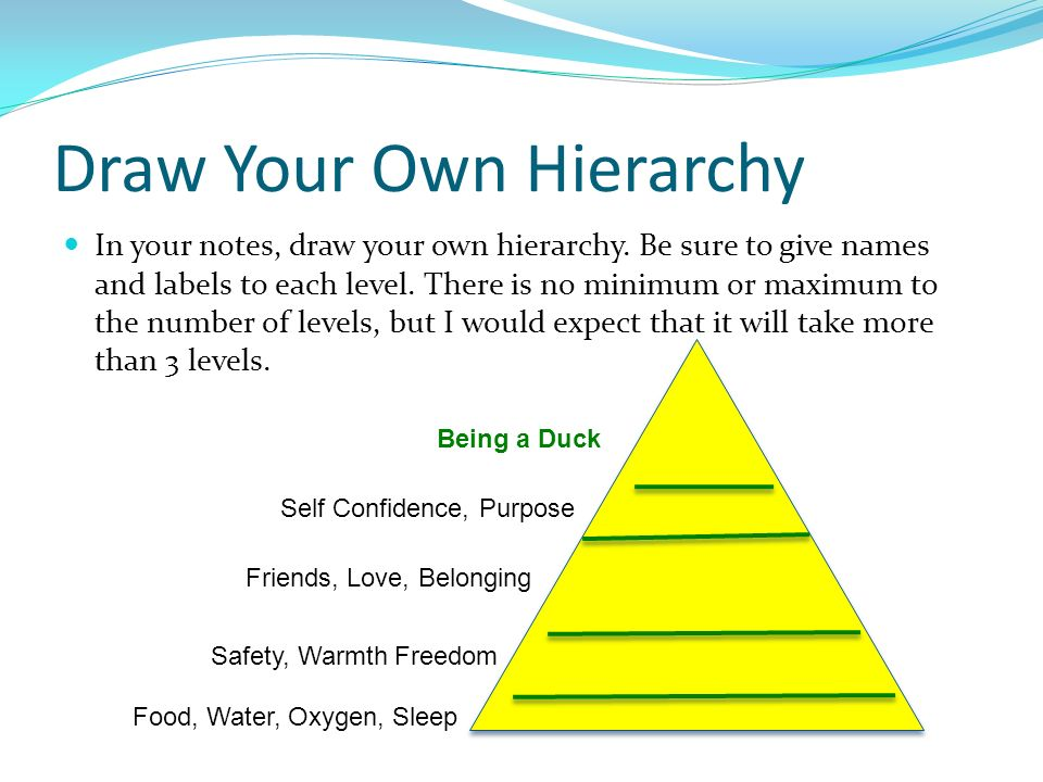 Draw Your Own Hierarchy