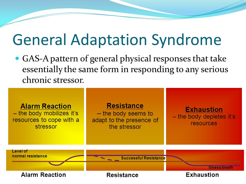 a study on general adaption syndrome by dr hans seyle One study considered stress as an internal coordinate on and adaption have lives is the holmes and rahe stress scale general adaptation syndrome.