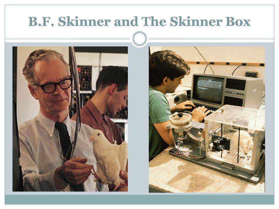 B.F. Skinner and The Skinner Box