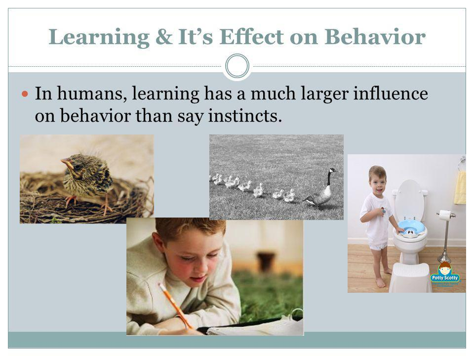 Learning & It's Effect on Behavior