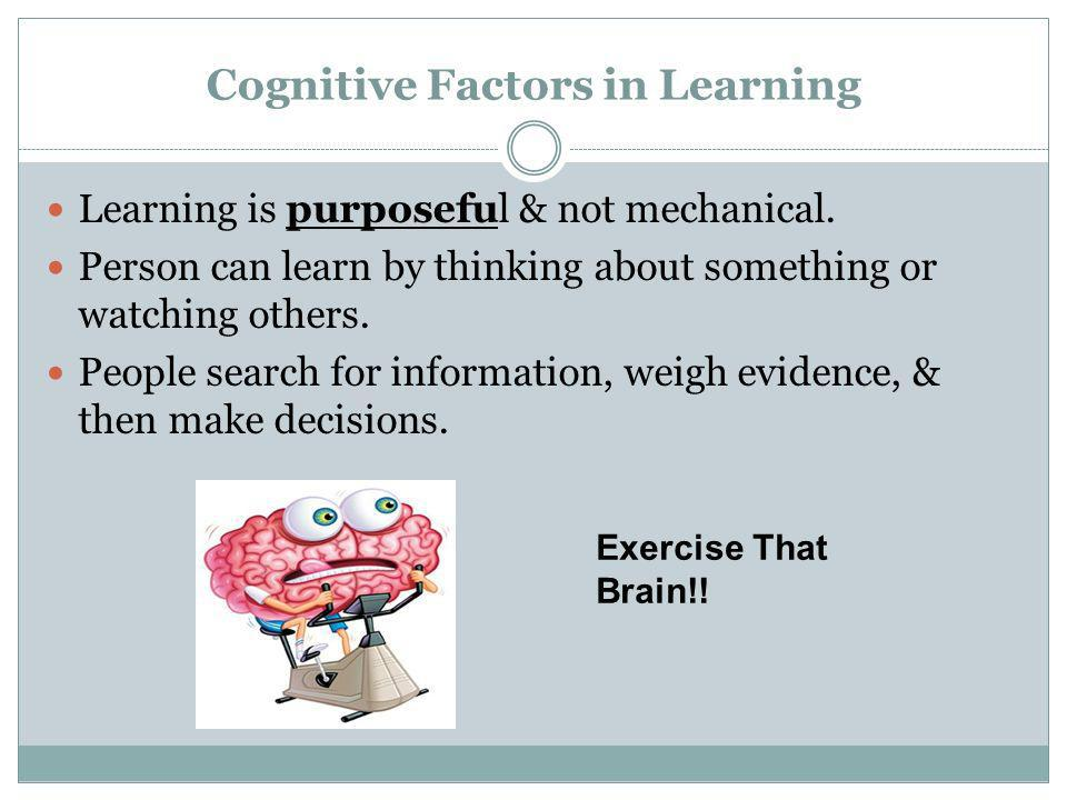 Cognitive Factors in Learning