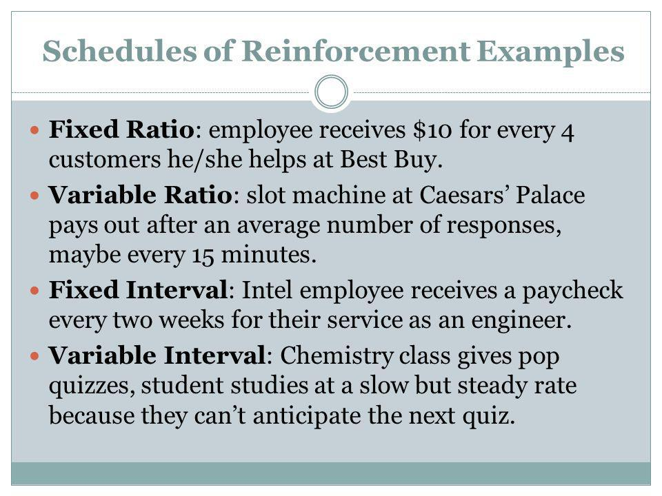 Schedules of Reinforcement Examples