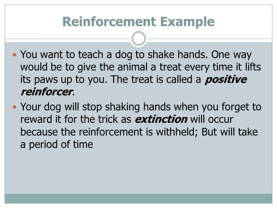 Reinforcement Example