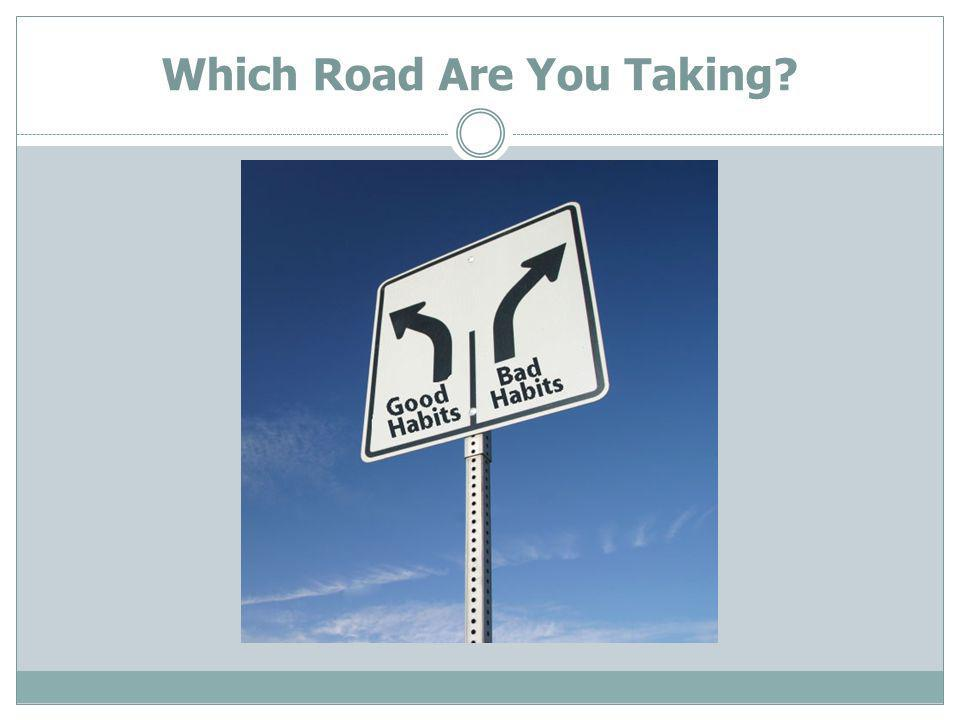 Which Road Are You Taking