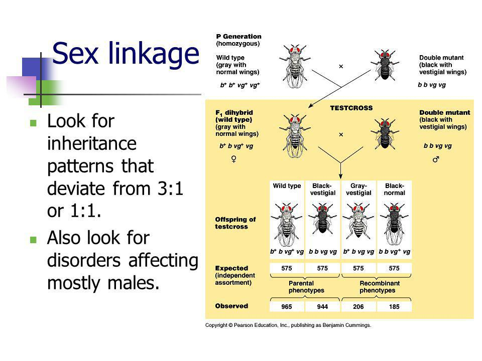 Sex linkage Look for inheritance patterns that deviate from 3:1 or 1:1.