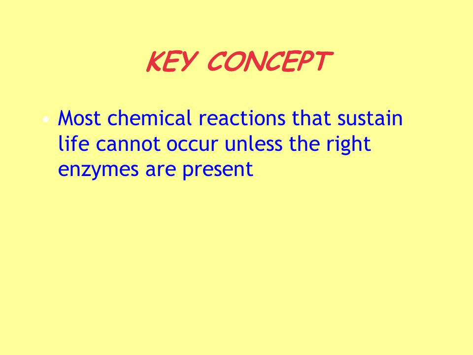 KEY CONCEPT Most chemical reactions that sustain life cannot occur unless the right enzymes are present.