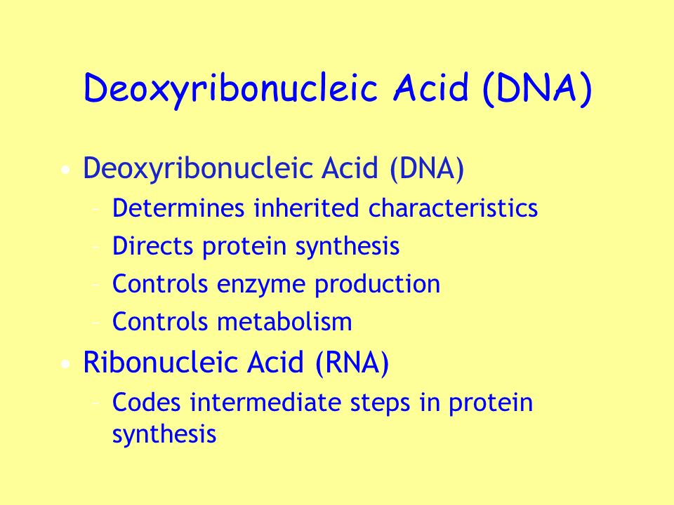 Deoxyribonucleic Acid (DNA)
