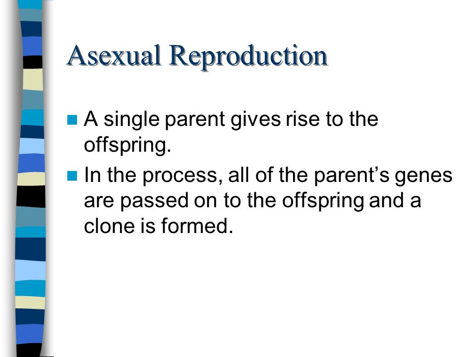 Asexual Reproduction A single parent gives rise to the offspring.