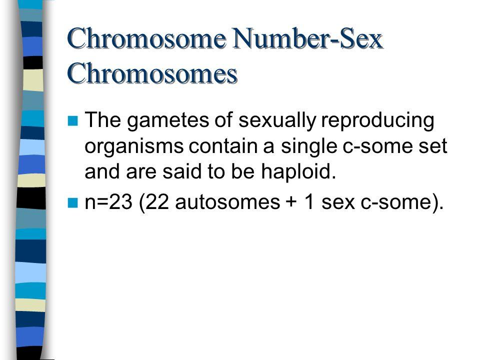 Chromosome Number-Sex Chromosomes