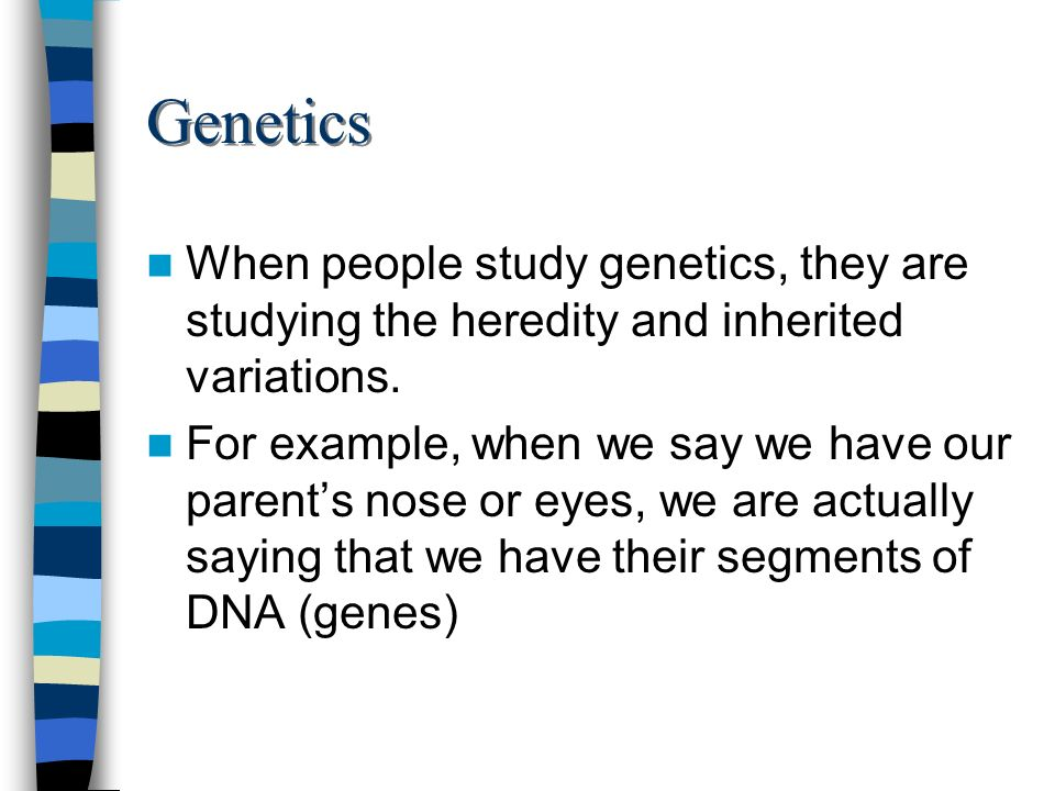 Genetics When people study genetics, they are studying the heredity and inherited variations.