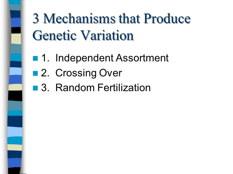 3 Mechanisms that Produce Genetic Variation