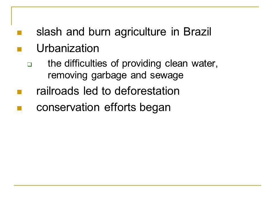 slash and burn agriculture in Brazil Urbanization