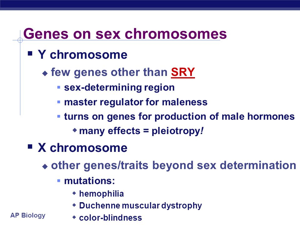 Genes on sex chromosomes