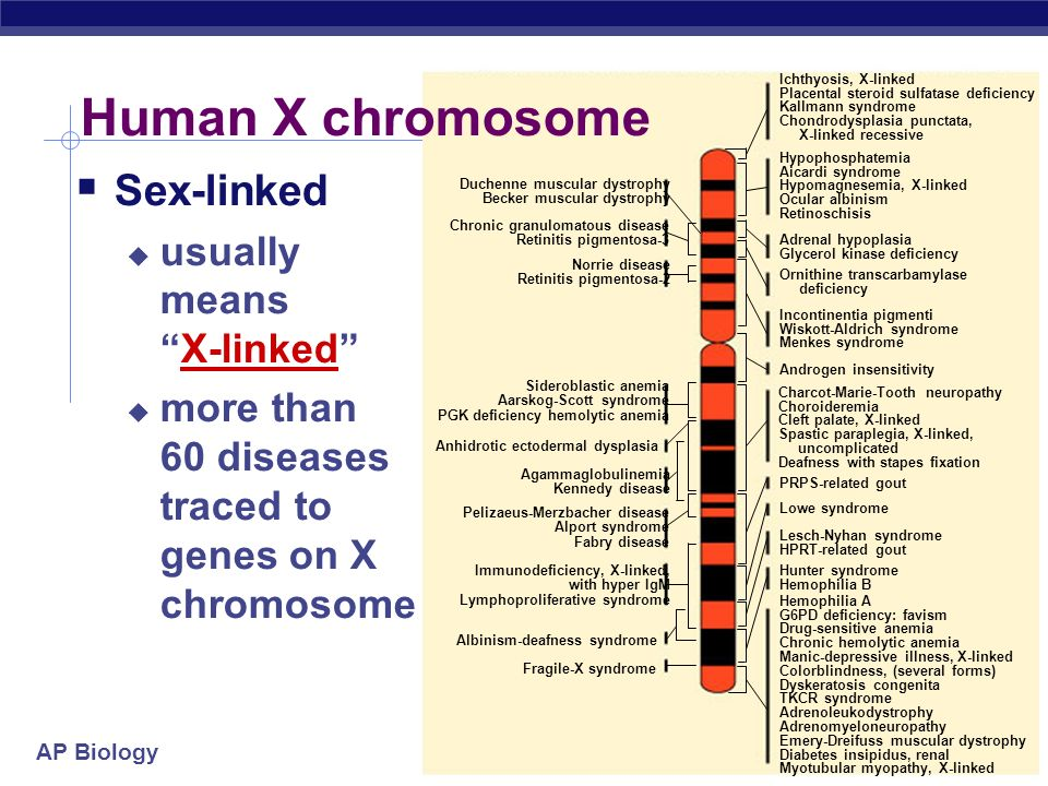Human X chromosome Sex-linked usually means X-linked