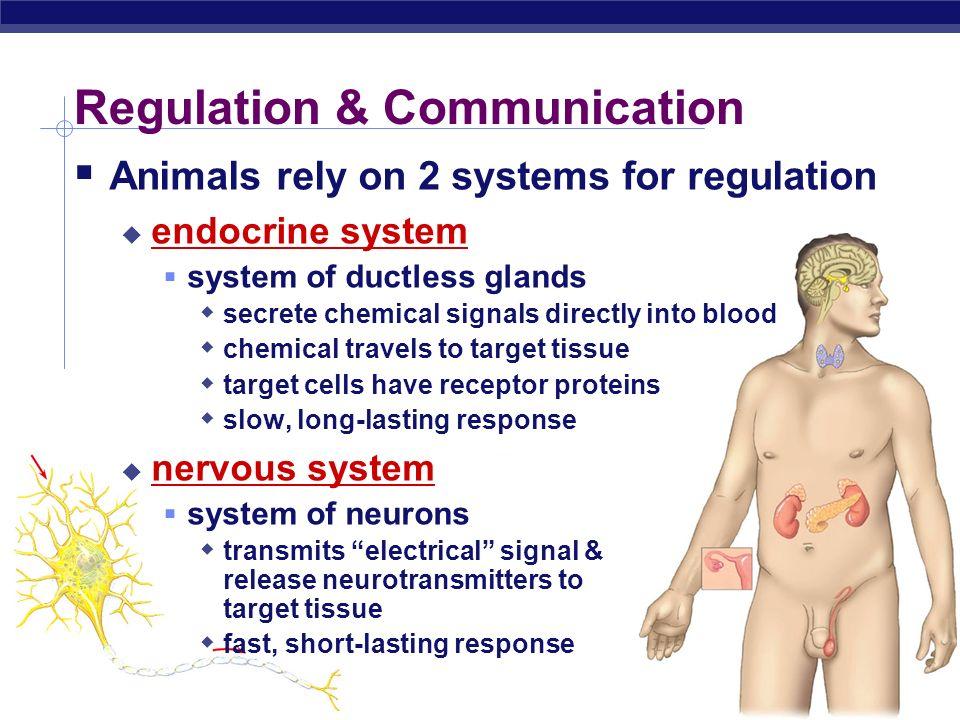 Regulation & Communication