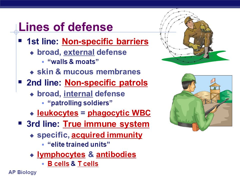 Lines of defense 1st line: Non-specific barriers