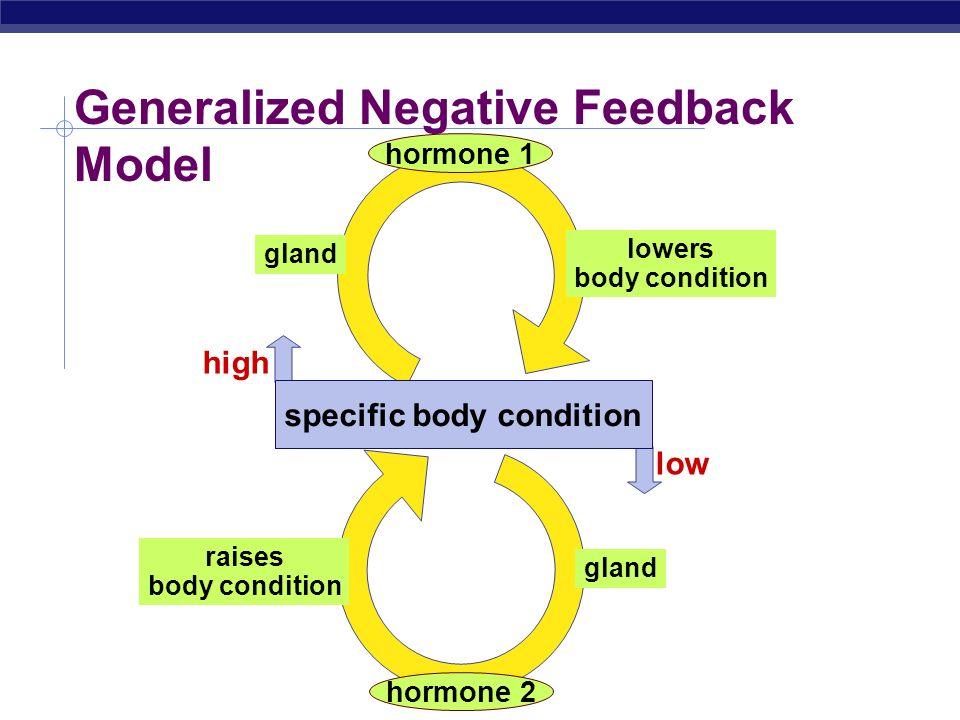 Generalized Negative Feedback Model