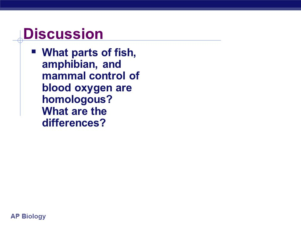 Discussion What parts of fish, amphibian, and mammal control of blood oxygen are homologous.
