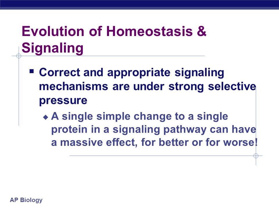Evolution of Homeostasis & Signaling