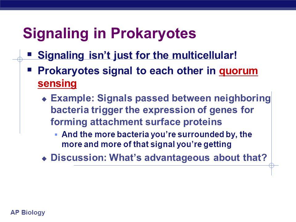 Signaling in Prokaryotes